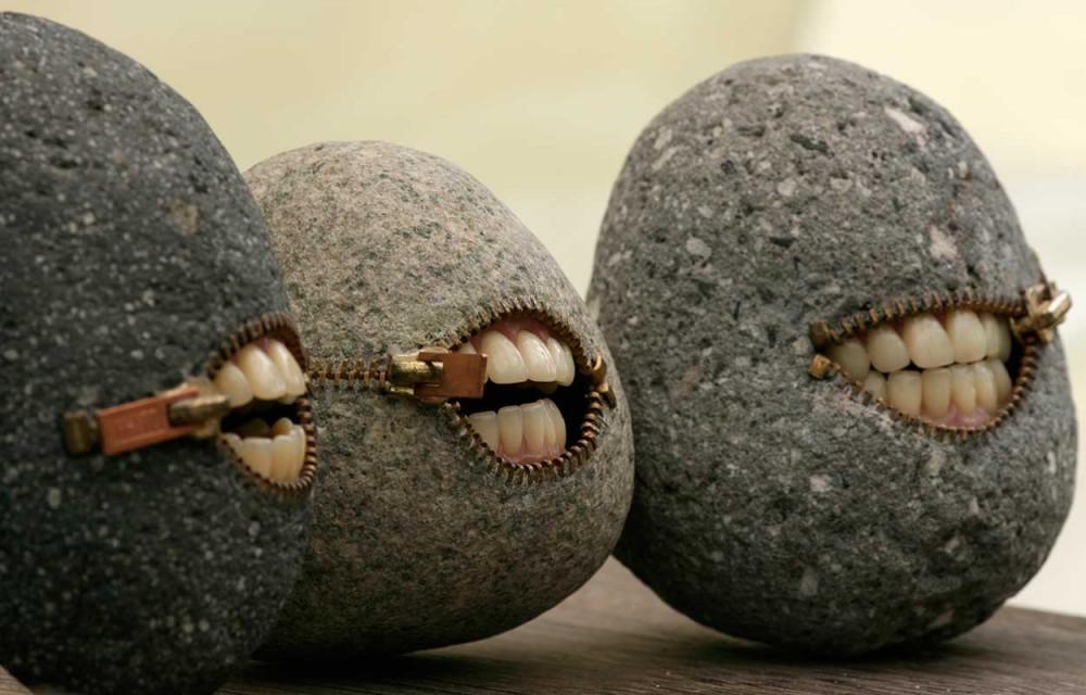 pet rock nedir